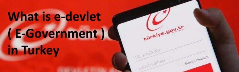 What is E-Devlet ( E-Goverment ) in Turkey